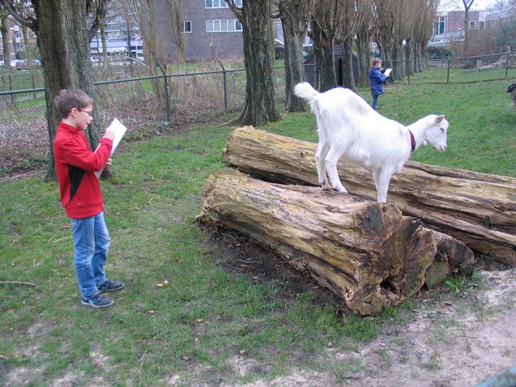 buiten dieren tekenen is lastig omdat ze nooit stilstaan!