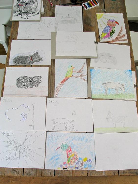 tekeningen van kat, vogels en geiten